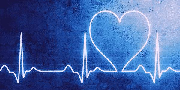 Herz und Hirn im Einklang